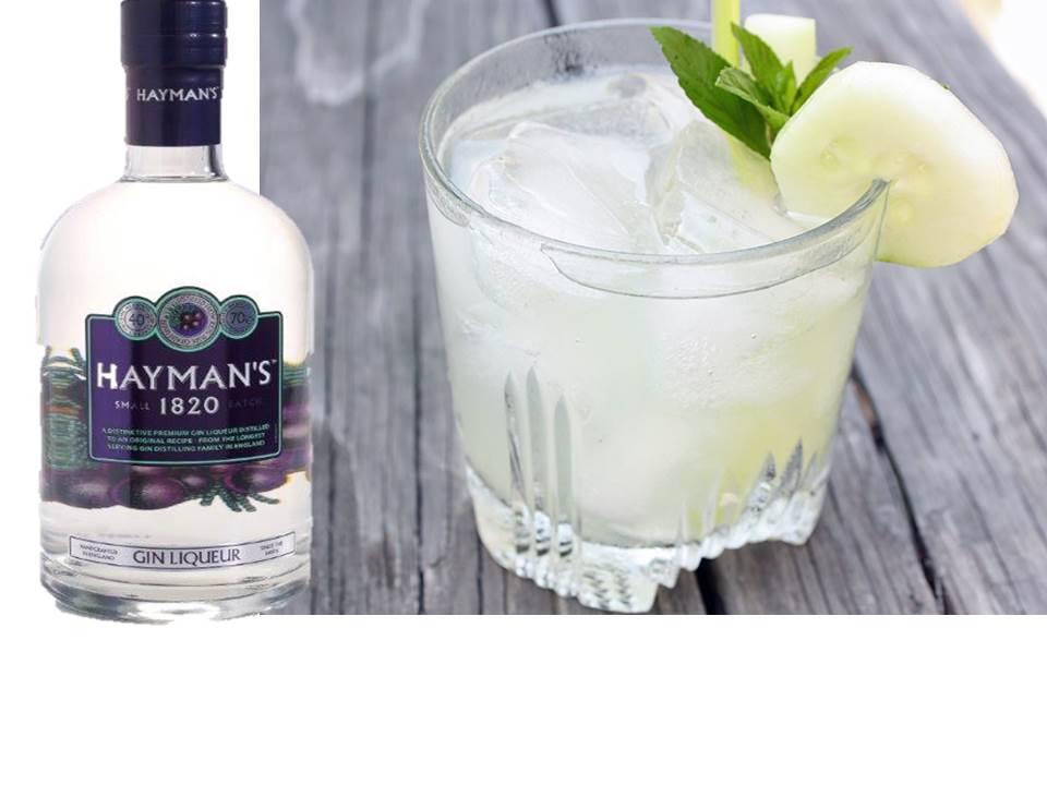 haymans-liqueur-de-gin-saphy-alcool